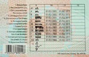 Водительские права в беларусь