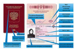 Как узнать где выдан загранпаспорт по серии и номеру