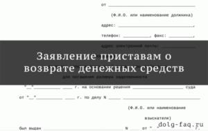 Написать заявление судебным приставам о возврате денежных средств
