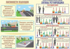 Обязанности пешеходов пдд 2018