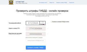 Как проверить есть ли штрафы на машину с российским номерами в беллорусии