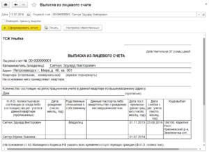 Бланк финансовая выписка из лицевого счета образец