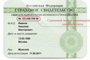 Как проверить дату регистрации снилс