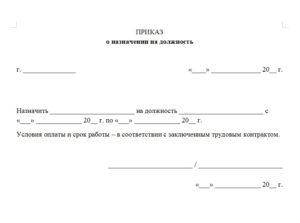 Приказ у ип о назначении директором и главбухом