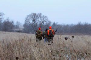 Сроки открытия осенне зимней охоты 2017 в московской области
