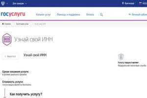 Граждане узбекистана узнать инн