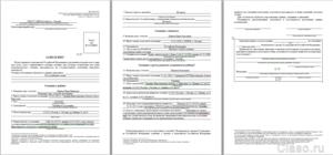Бланки заявления на гражданство рф 2017