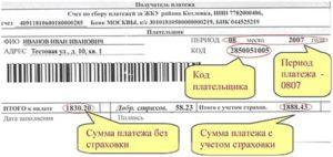 Код плательщика 10 цифр как узнать